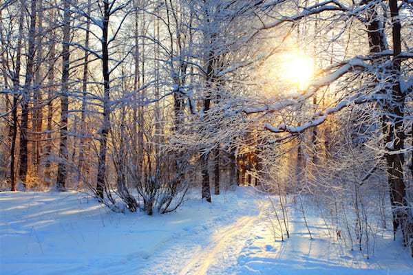 Arbeitsrecht Winter