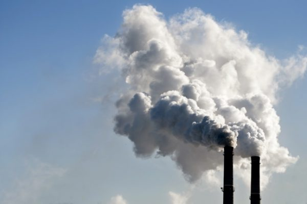 BVerwG: Erneute Ausweitung der Umweltverbandsklage