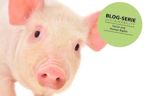 Schutzvorschriften Fleischwirtschaft