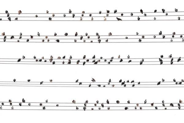 Liedtext Pippi Langstrumpf